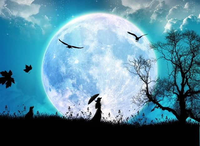 soir es tambours chamaniques lausanne sous la pleine lune en for t centre anama lausanne. Black Bedroom Furniture Sets. Home Design Ideas